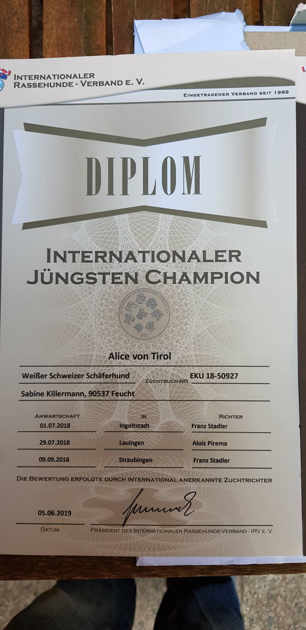 Internationaler Jüngsten Champion