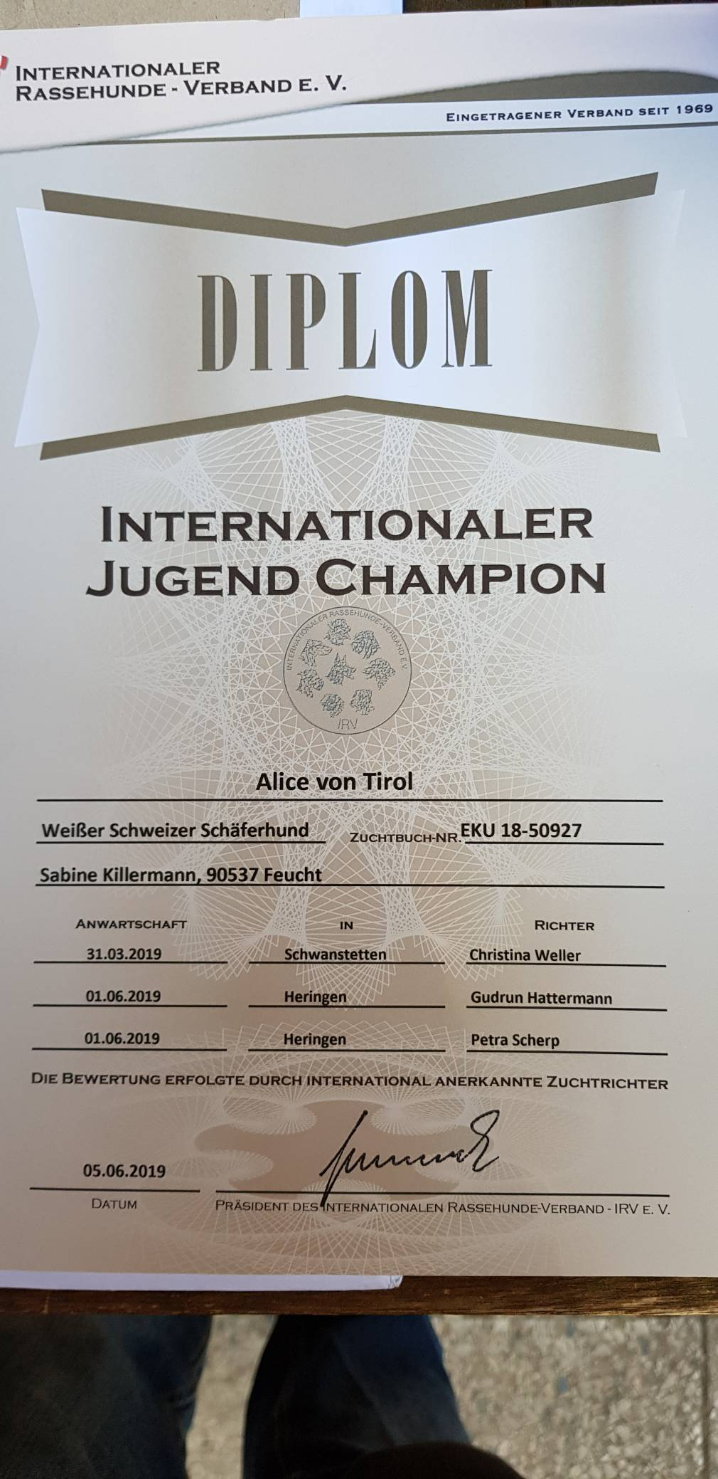 Internationaler Jugend Champion