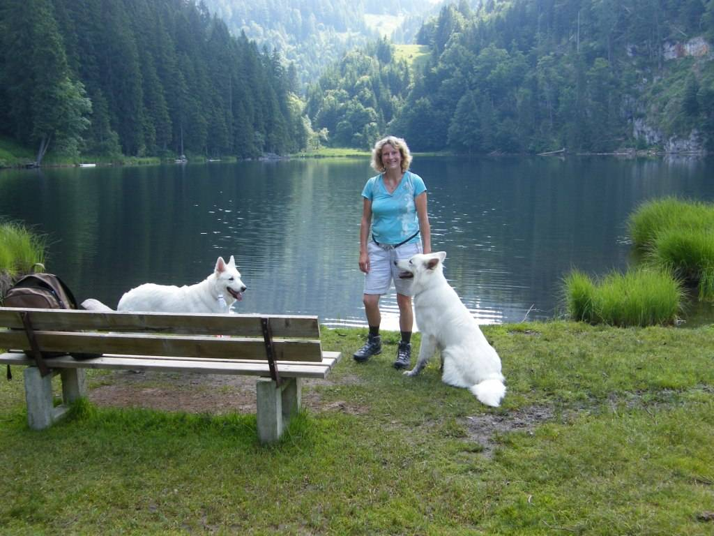 romantischer Taubensee - Brief