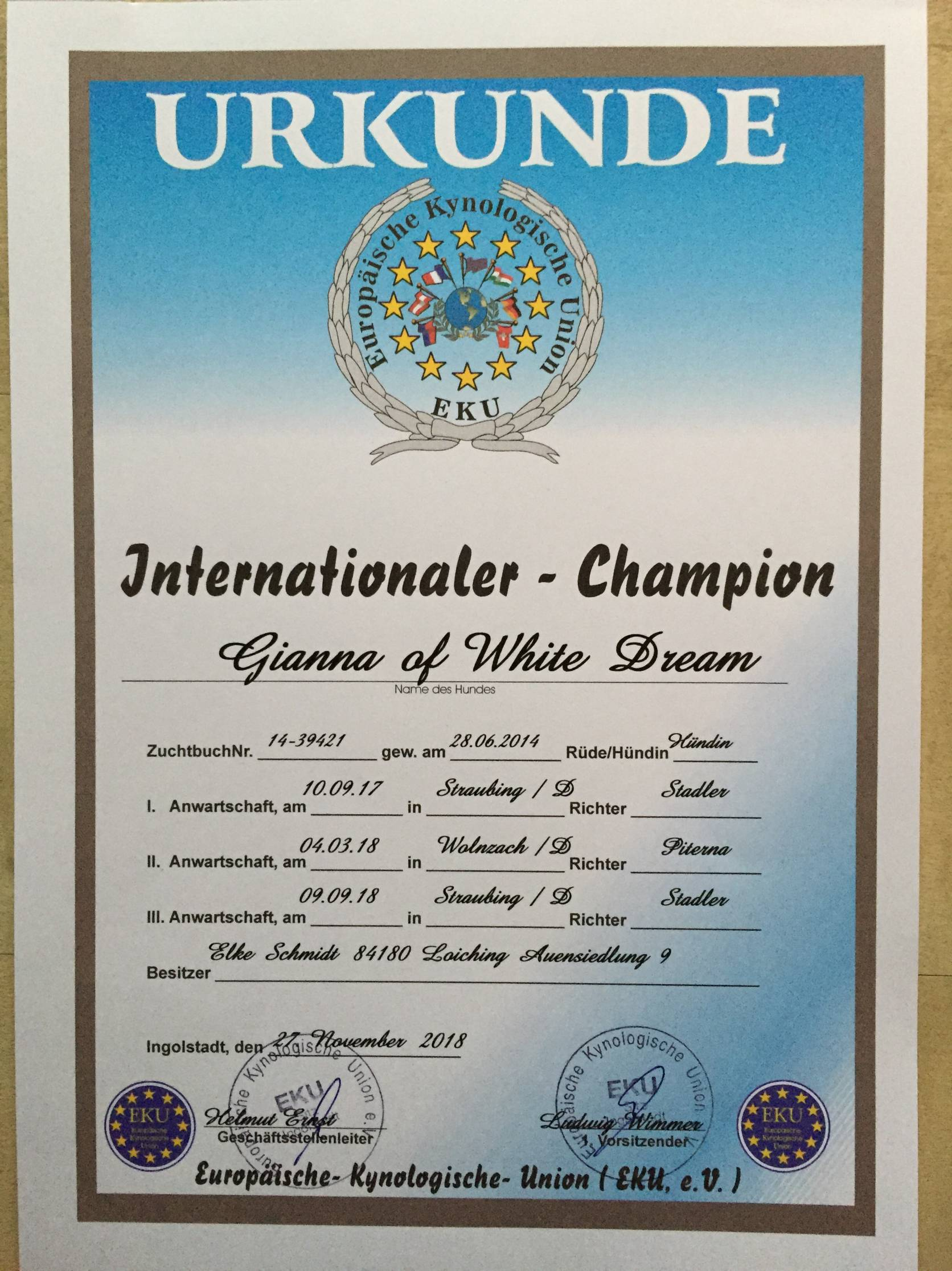 Internationaler Champion